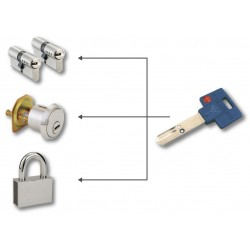 Zjednotenie vložiek Mul-T-Lock na spoločný kľúč